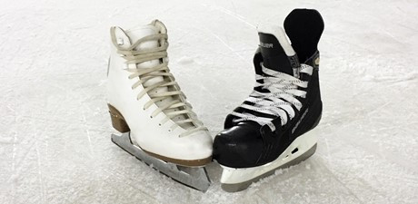 Patinoires couvertes
