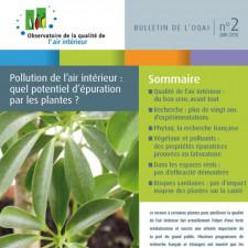 Pollution de l'air intérieur : quel potentiel d'épuration par les plantes ?