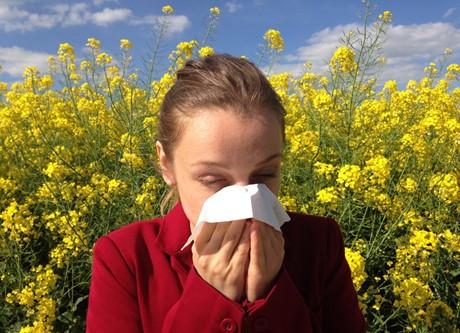Allergènes